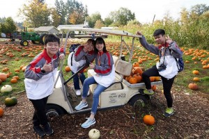 TWGHs Student Ambassadors visited seasonal pumpkin field, and watched the salmon runs and whales in Victoria to gain an in-depth understanding of the natural habitat of Vancouver.
