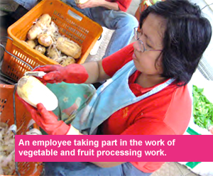 An empolyee taking part in the work of vegetable and fruit processing work